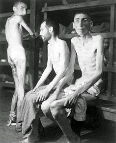 a verdade sobre o holocausto