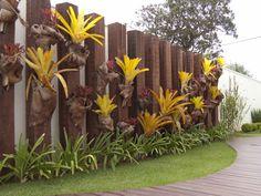 jardim com bromelias e pedras - Pesquisa Google