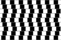 Cafe Wall Illusion  Expand  next previous  Play Previous    21/41  Next    The grey lines don't look parallel even though in fact they are.  Close