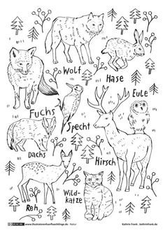 Ausmalbild oder Abpausen für Kinder - Natur Waldtiere  *** Wood Animals Coloring Page for kids