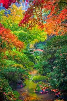 Autumn Serenity In Portland Japanese Gardens