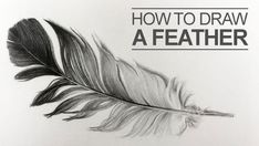 100 How To Draw Tutorials - Draw a Feather - Eyes, Hair, Face, Lips, People, Animals, Hands - Step by Step Drawing Tutorial for Beginners - Free Easy Lessons