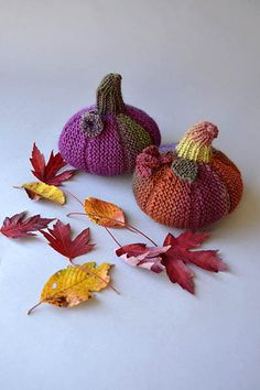 Free Universal Yarn Pattern : Wee Pumpkin  #knit