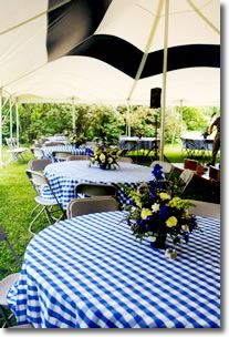 95 best Party/Event in GINGHAM images on Pinterest | Events, Wedding ...