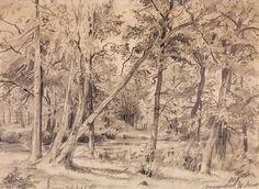 Болото на Петровском острове. 1869 23х31,9