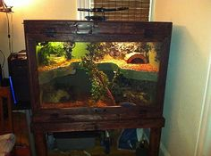 2story reptile home