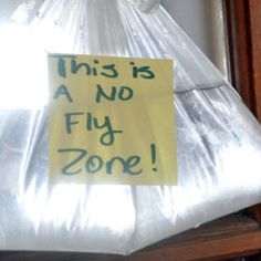 This Is An Awesome Post About How To Keep Flies Away With A Penny And A Bag  Of Water   And Why It Works. Those Flies Are So Annoying!