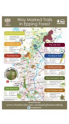 Walks And Walking - New Epping Forest Way Marked Trails Map 2014 Secret Places In London, Things To Do In London, Park Trails, Hiking Trails, New Forest England, Homes England, Epping Forest, Walking Routes, Forest Trail