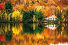 Autumn - L'automne au Québec!   http://www.frenchessentials.com/french-curriculum-ebooks-homeschool-store