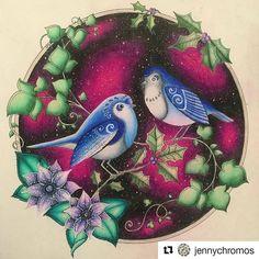 Muito maravilhoso! #Repost @jennychromos with @repostapp Birds from Johanna's Christmas.  #jennychromosfinnished  #coloriage #coloringforadults #målarbokförvuxna #målarbok #prismacolor #johannabasfordcoloringbook #johannaschristmas #johannabasford #johannasjul #colouringbook #adultcoloringbook #johannaschristmascoloringbook  #johannaschristmas