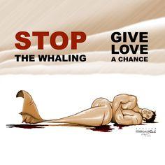 Anachorète_boï Give love a chance Stop whaling