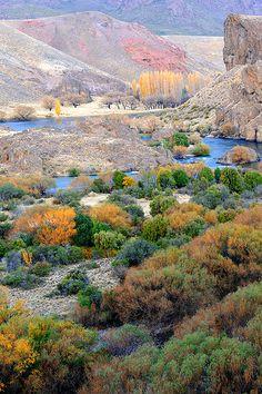 Rio Limay, Neuquen, Region de Los Lagos. Patagonia, Argentina  (copyright: SaulSantosDiaz photographer)