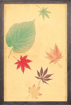 Fluvius Leaves 2