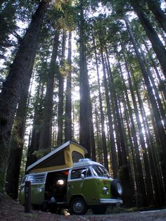VW Westfalia in the woods...