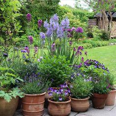 Prairie Garden, Garden Cottage, Garden Sheds Uk, Outdoor Plants, Outdoor Gardens, Lake Landscaping, Garden Planters, Garden Arbor, Greenhouse Gardening