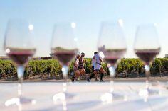 LE SPORT ET LE VIN FONT-ILS VRAIMENT BON MÉNAGE ? Les préjugés ont la vie dure. Les croyances, pour un peu qu'elles plaisent à la société et valident un certain mode de vie, se propagent très vite. Celles concernant le vin et la santé en France ne font pas exceptions. Le vin est-il bon pour la santé ? Peut-on en boire si on est un sportif ? Effectivement, quelques composés du vin rouge seraient bénéfiques pour la santé. Certains prétendent aussi qu'ils amélioreraient les performances…