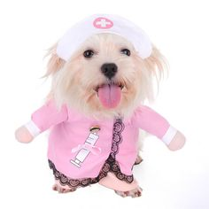 Quick, I need a medic! Have your dog playing nurse in this vibrant pink Nurse Dog Costume. https://www.dressyourdoggy.com/collections/funny-dog-costumes/products/cute-nurse-dog-outfit?variant=27370197321