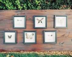 butterfly seating chart #brilliantbridal