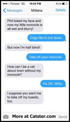 Read more of: Texts from Mittens: The Blue Jay Gang Edition | Catster