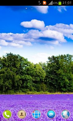 Lavender Field Theme for Go Launcher EX