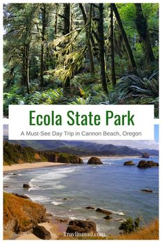 USA - A day trip to Ecola State Park Oregon is a must if you're in Cannon Beach or even Portland. The Park is perfect for a family picnic hiking or enjoying the gorgeous views of the Oregon Coast. Here's a guide for what to see and do while you're there. Road Trip Oregon, Oregon Camping, Oregon Vacation, Oregon Travel, Beach Camping, Beach Trip, Oregon Coast Roadtrip, Oregon Beaches, Usa Travel Guide