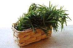 Tratament natural anticelulitic | Retete culinare Laura Adamache Korn, Wicker Baskets, Sweets, Home Decor, Interiors, The Body, Plant, Decoration Home, Good Stocking Stuffers