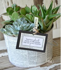 Garden/Plant Gift Ideas - This succulent garden plant will make a great gift as a teacher appreciation gift or for any other occasion if the recipient likes plants. The great thing about succulent plants is that they need little care to grow and flourish. Just choose some succulent plants and glue newspaper to a plant pot for the perfect gift. If the gift is for a teacher appreciation gift, this website also offers a free teacher message printable.