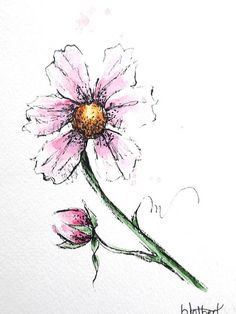 Pink Cosmos Flower Original Watercolor Art Painting Pen and