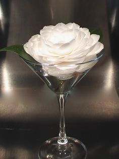 Easy Camellia Martini (camellias have a short stem, so they need a shallow container)