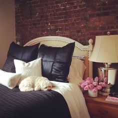 I love everything about this! Expose brick wall, black! (Duh), and a pup on the bed. Want.it.all.right.meow.!