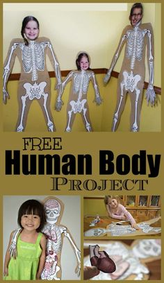 FREE Human Body Project FREE Human Body Project – such a fun hands on kids activity for kids to learn Science Projects For Kids, Science Activities For Kids, Science Classroom, Preschool Science, Classroom Setup, Classroom Displays, Kid Science, Listening Activities, Computer Science