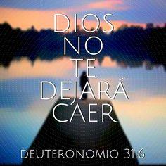 """""""Esforzaos y cobrad ánimo; no temáis, ni tengáis miedo de ellos, porque Jehová tu Dios es el que va contigo; no te dejará, ni te desamparará"""". Deuteronomio 31:6 (RVR1960)"""