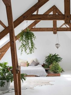 Attic bedrooms are my new favorite thing. I love the shape of the space, the exposed beams, and ones like this that you can add lots of pretty plants to!
