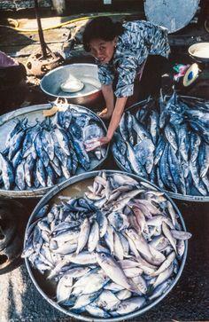 Saigon Fish Market, Vietnam 1995 http://viaggi.asiatica.com/
