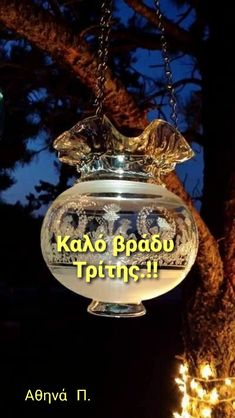 Nice Photos, Good Morning Good Night, Wonders Of The World, Christmas Bulbs, Colours, Holiday Decor, Image, Beautiful, Cute Photos