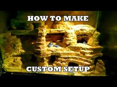 How to make a custom setup for a Leopard Gecko or other reptiles - YouTube