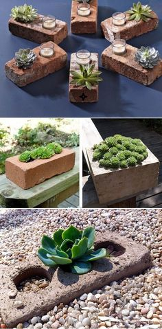 DIY Succulent Planters Of Used Bricks. I actually used the grey building blocks DIY Succulent Planters Of Used Bricks. Succulent Planter Diy, Succulent Landscaping, Cacti And Succulents, Planting Succulents, Planting Flowers, Diy Planters, Garden Landscaping, Hanging Planters, Landscaping Ideas