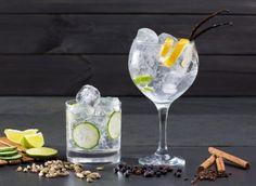 Gin-Tasting Wien – Gin auf Eis
