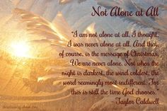 12 Days of Christmas Devotions (Day 5): Not Alone at All