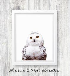 Owl Print Snow Owl Wall Art Bird Photo Nursery Decor Kids
