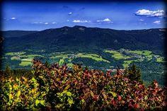Bavarian Forest - The Best Kept Holiday Secret In Europe! Bavarian Forest, Visit Germany, Forest Mountain, Europe, Bavaria Germany, Mountains, Holiday, Nature, Travel