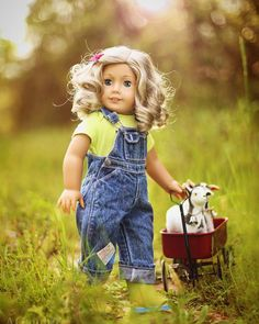 Photographer.Collector.Flood Survivor.Slight Hoarder of all things AG. Shared account for 2 doll fans.