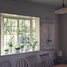 asamiさんの、壁/天井,植物,DIY,出窓,古材,ホワイトインテリア,ホーロー,ヴォレー,のお部屋写真