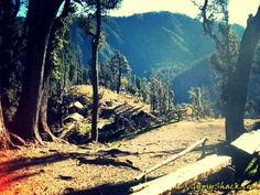 Rishikesh, Uttarakhand: Short treks to temple, explore Shivanandi village, go rafting or kayaking, nourish your body with Yoga and Haridwar, Forest Trail, India Tour, Rishikesh, Lush Green, Stargazing, Rafting, Ecology, Night Skies