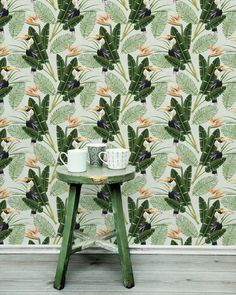 Birds of Paradise by Mind the Gap - Green - Mural : Wallpaper Direct Tropical Design, Tropical Pattern, Tropical Birds, Exotic Birds, Exotic Flowers, Tropical Plants, Paradise Wallpaper, Tropical Wallpaper, Wall Wallpaper