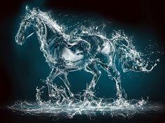 Les fonds d'écran - Une réprésentation d'un cheval d'eau