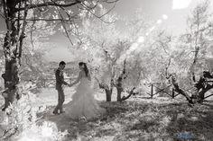 Giacomo e Irene | Pistoia | matrimonio wedding photo reportage » Alessandro Ghedina people photography