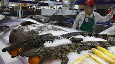 ICYMI: La moda asiática de comer cocodrilo por Navidad ha llegado a España