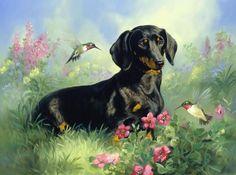 "Linda Picken art, ""Black Dachshund with Hummingbirds"""