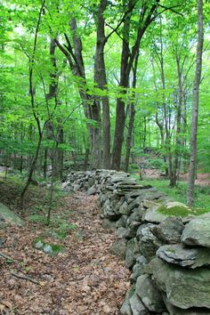 New England Stone Walls, An American Stonehenge Dry Stack Stone, Stacked Stone Walls, Dry Stone, Brick And Stone, Stone Work, Stone Fence, Farm Yard, Backyard Landscaping, The Great Outdoors